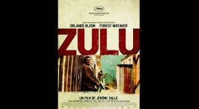 Filmkritik in Reimen: Zulu (2014)