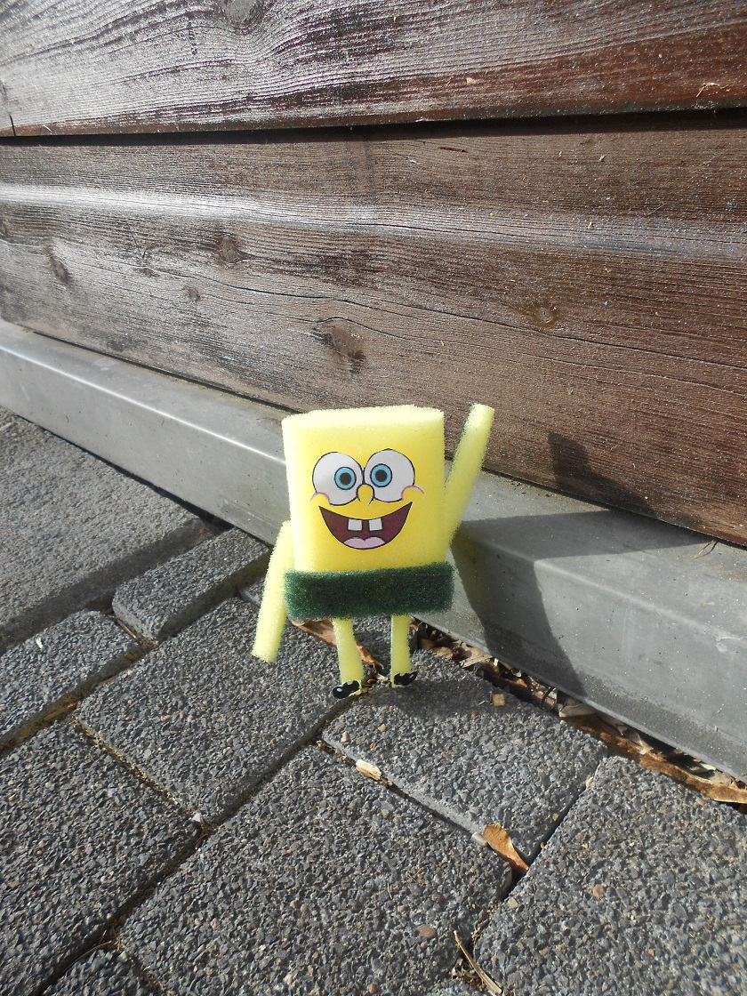 spongebob schwammkopf draußen