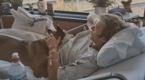 Sehenswerter Kurzfilm über die Liebe zwischen Hund und Herrchen