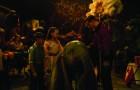 """Dumbo"" Kritik: Tim Burtons Realversion des Disney-Klassikers"